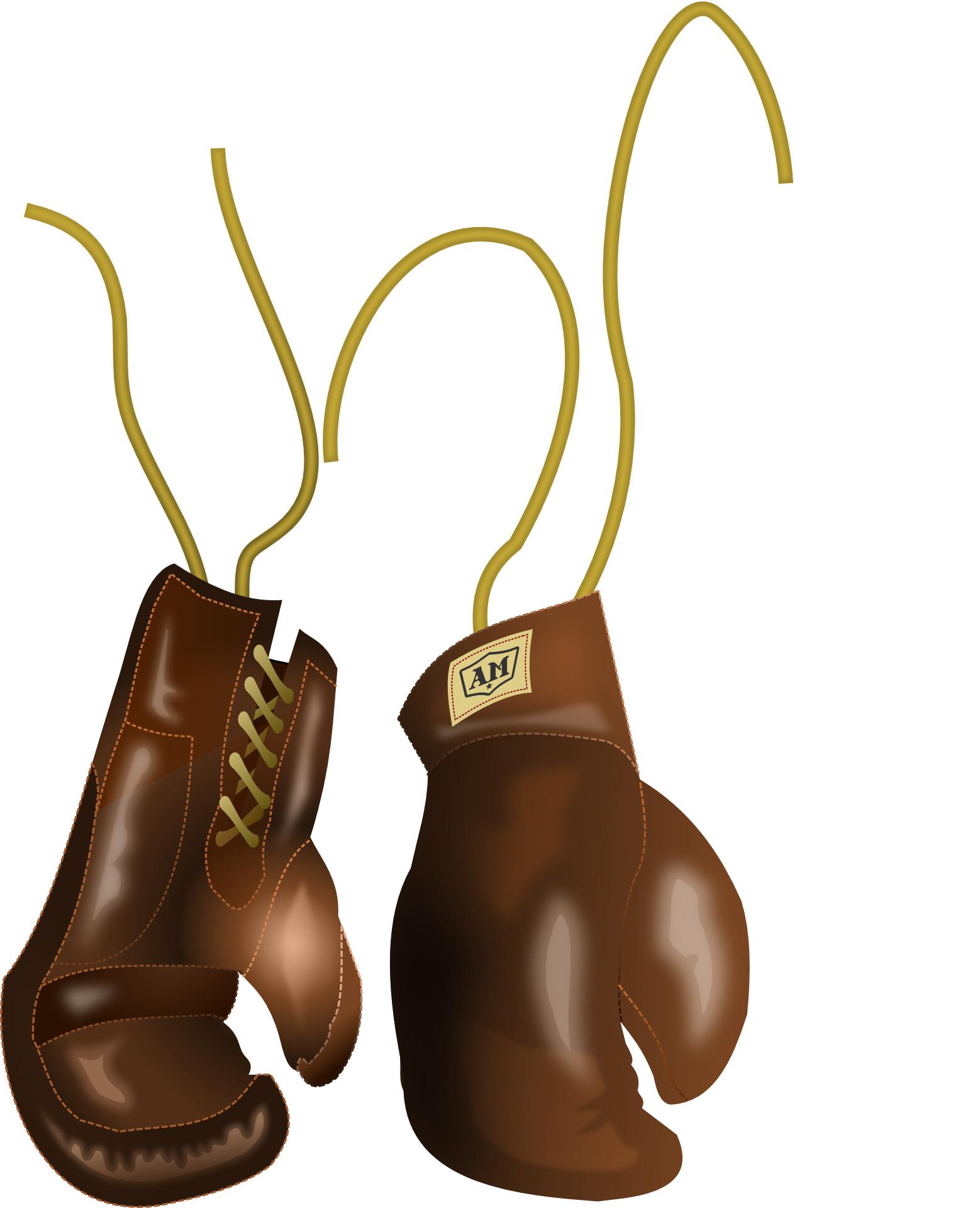 boxing-158519_Clip