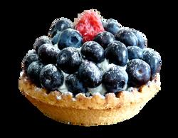 blueberries-55455_Clip