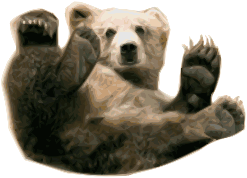 Grizzly_Bear_1_by_Merlin2525