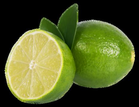 Lime-Sliced-PNG-Image.png