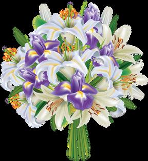 Iris (1).png