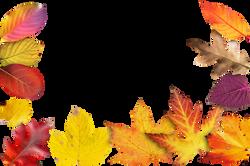 autumn-941192_Clip