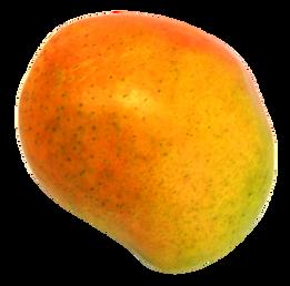 Mango-PNG-Image.png