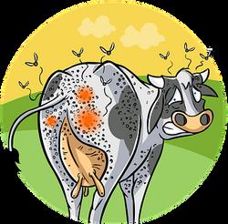 agribusiness-1487026__340