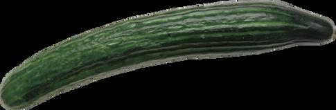 Cucumber, free PNGs