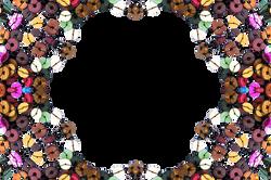 border-14342_Clip