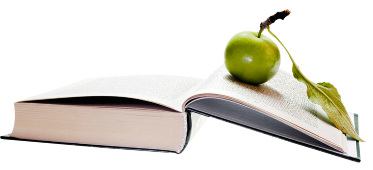 Apple-on-Book-PNG-image.png