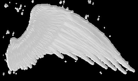 Wings-png-14