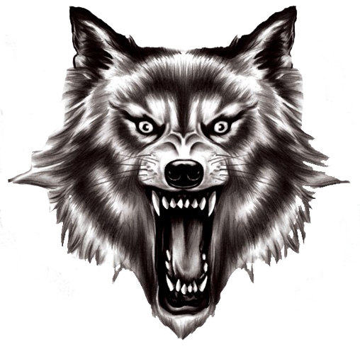 Free wolf png images.