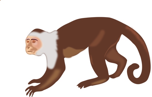 animal-1293130__340