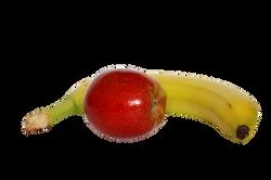 apple-839844_Clip