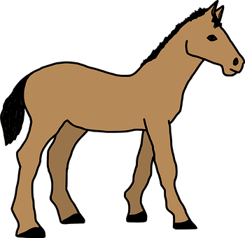 animal-1293158__340