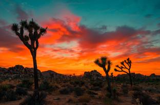 Cossyimages Sunset (9).jpg