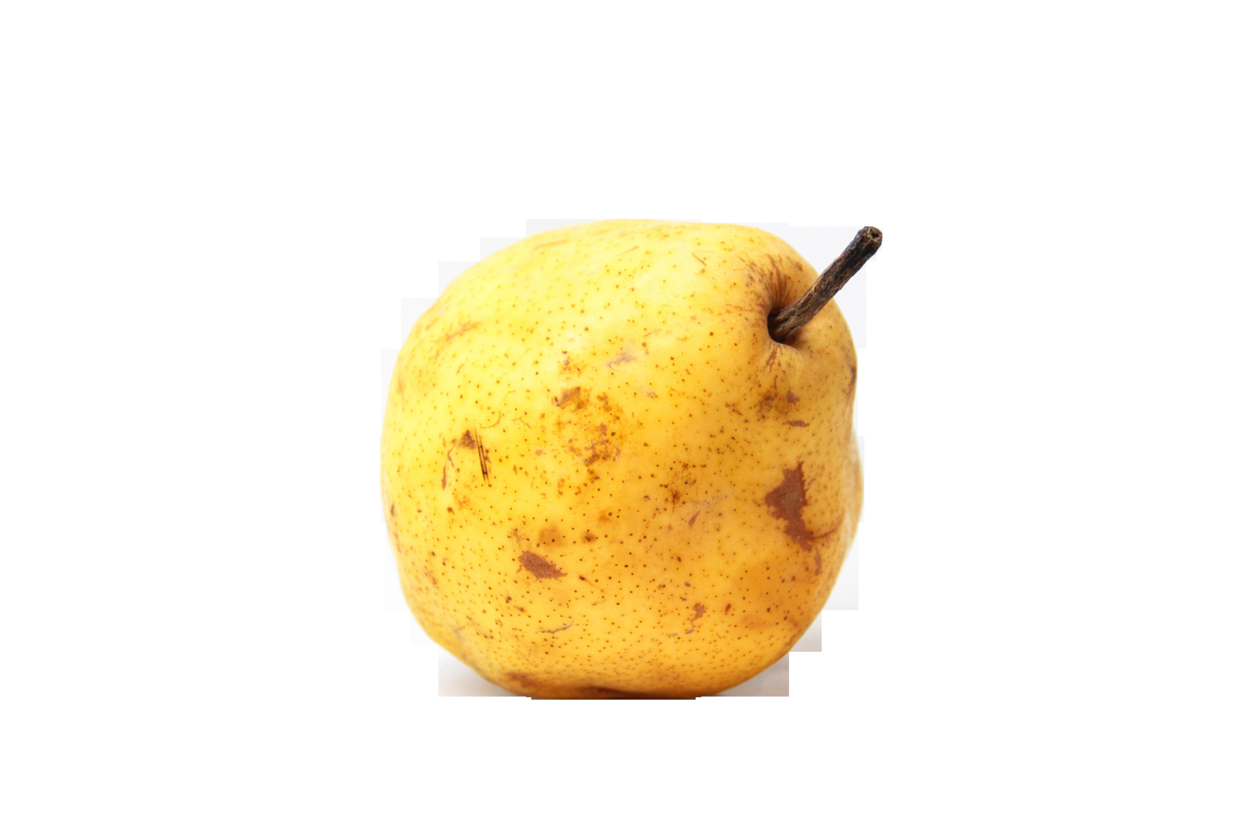 fruit-1161136_Clip
