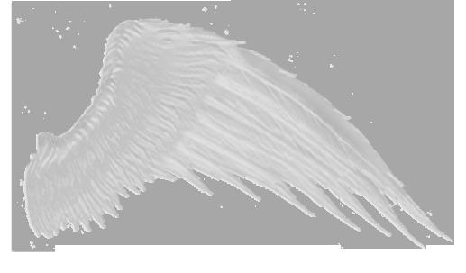 Wings-png-41