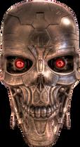 Terminator (34).png