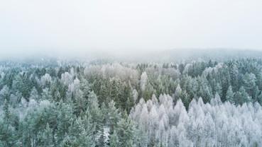 Cossyimages Winter (69).jpg