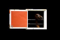 horse-1147790_Clip