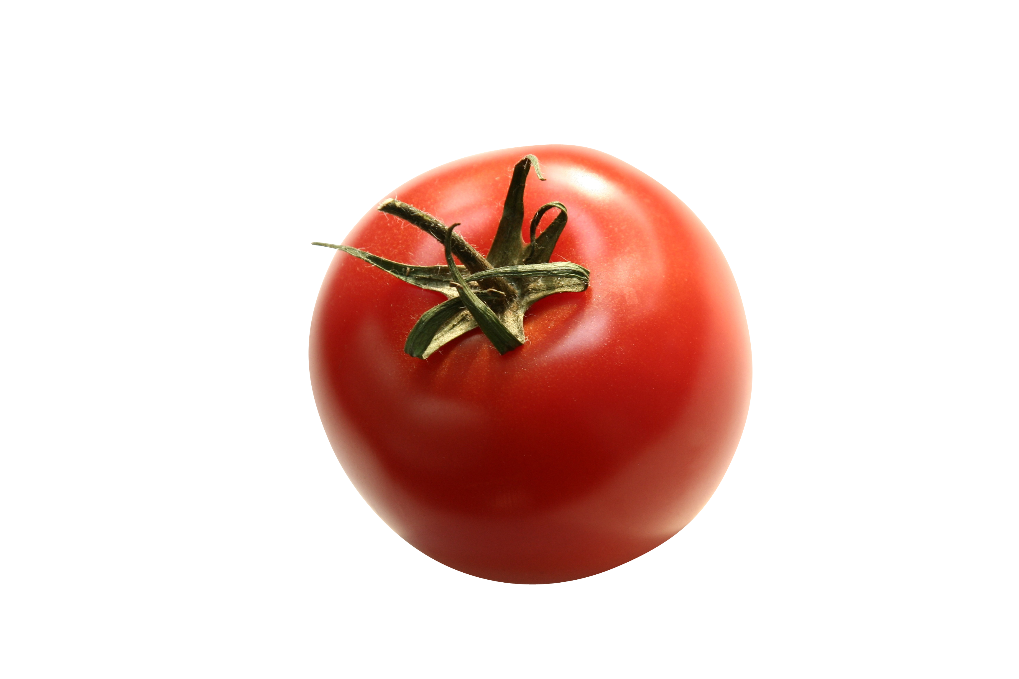 tomato-952449_Clip