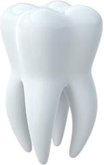Teeth transparent images