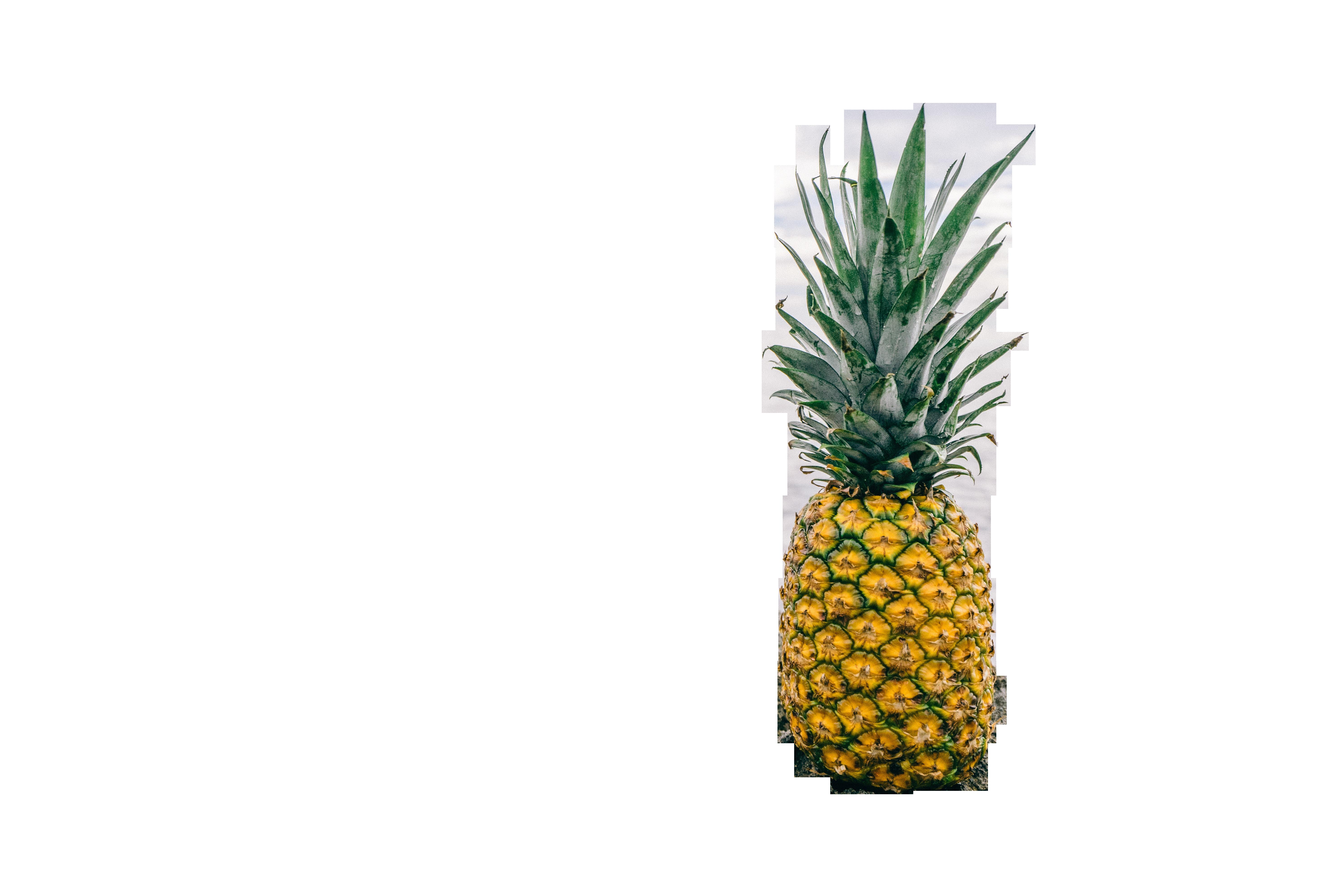 pineapple-1149631_Clip