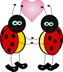 Machovka_lady_bugs