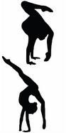 aerobics-311371__340.png
