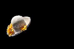 hat-968581_Clip