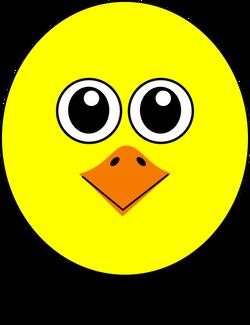 Chick_001_Head_Cartoon