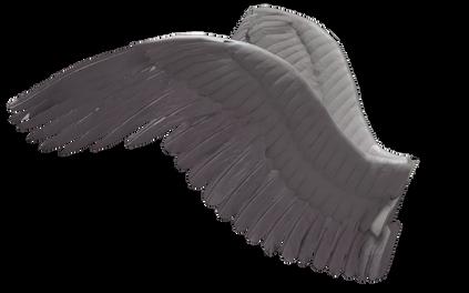 Wings-png-38