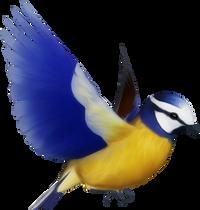 Bird PNGsBird PNGs
