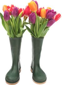 Wellington boots (5).png