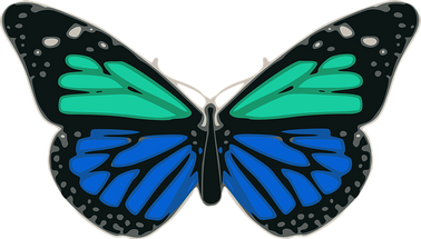 butterfly-48502__340.png