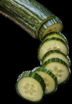 cucumber-1309572_Clip