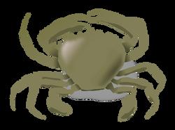 addon_the_crab
