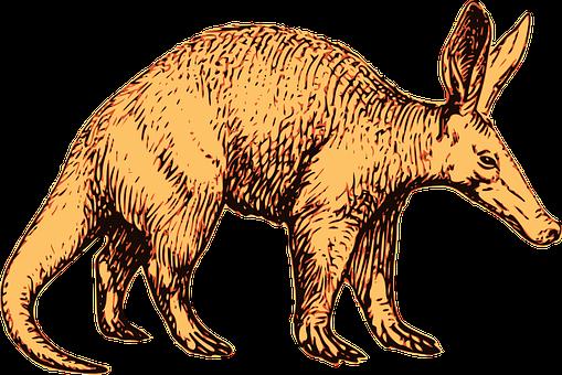 aardvark-2026983__340