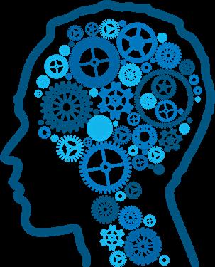 Brain PNG