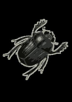 Bug free PNGs