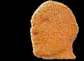 head-3192815__340.png