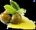 Olive oil PNG