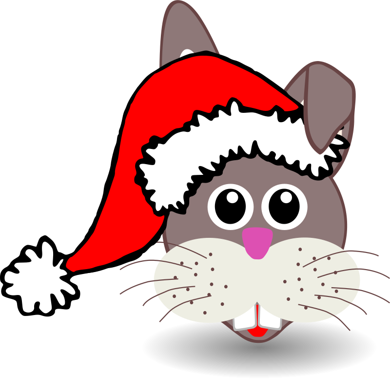 Rabbit_001_Face_Cartoon_with_Santa_hat