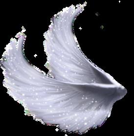 Wings-png-15