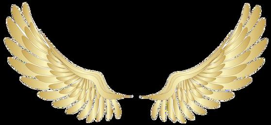 Wings-png-29