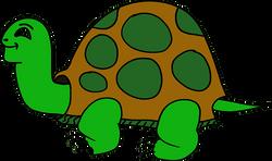 animal-1293135__340