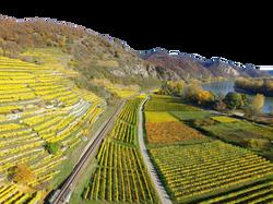 upper-rhine-valley-1030909_Clip