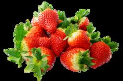strawberries-272812_Clip