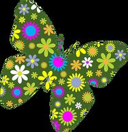 butterflies-1296204__340.png