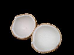 coconut-43_Clip