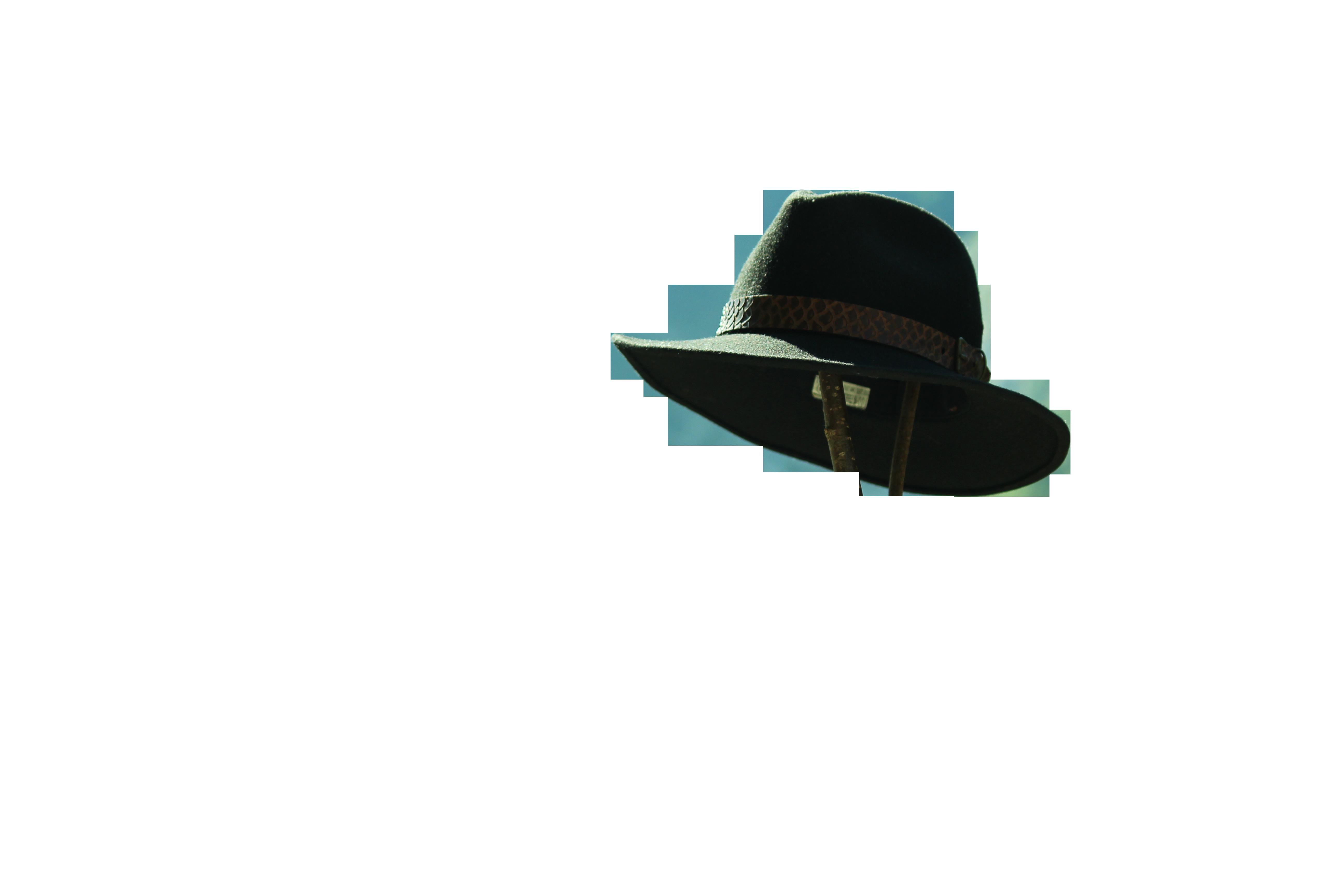 hat-1085537_Clip