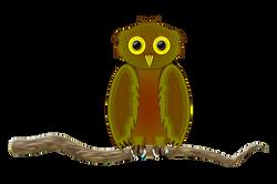 Owl_3_-_Finished